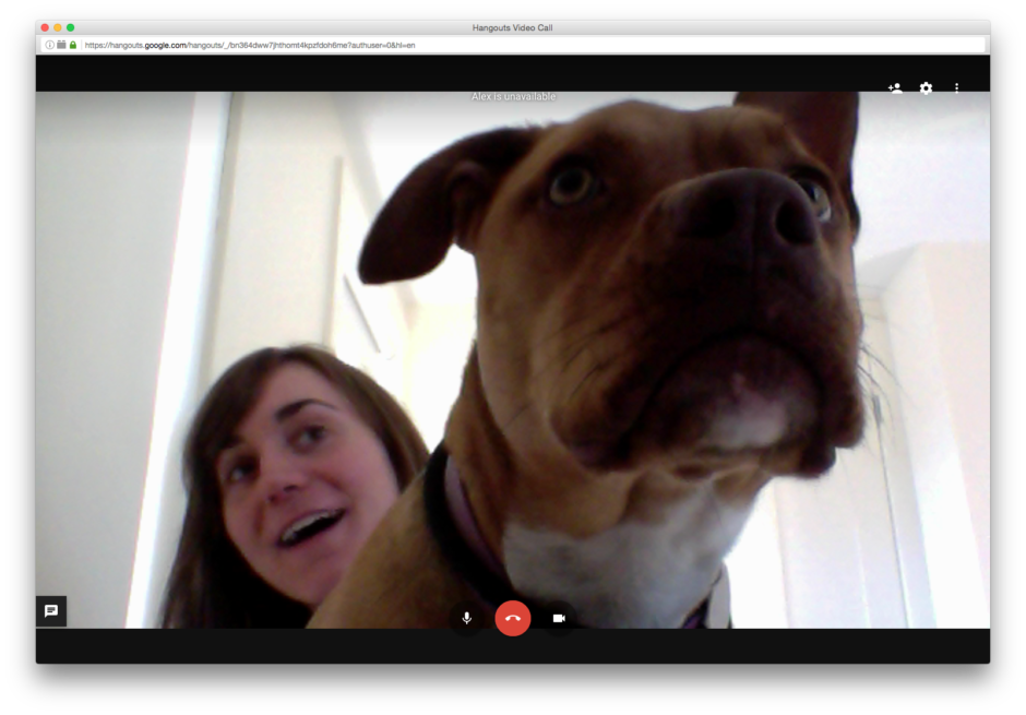 A screenshot of the author on a video call with her dog, whose face fills most of the frame.