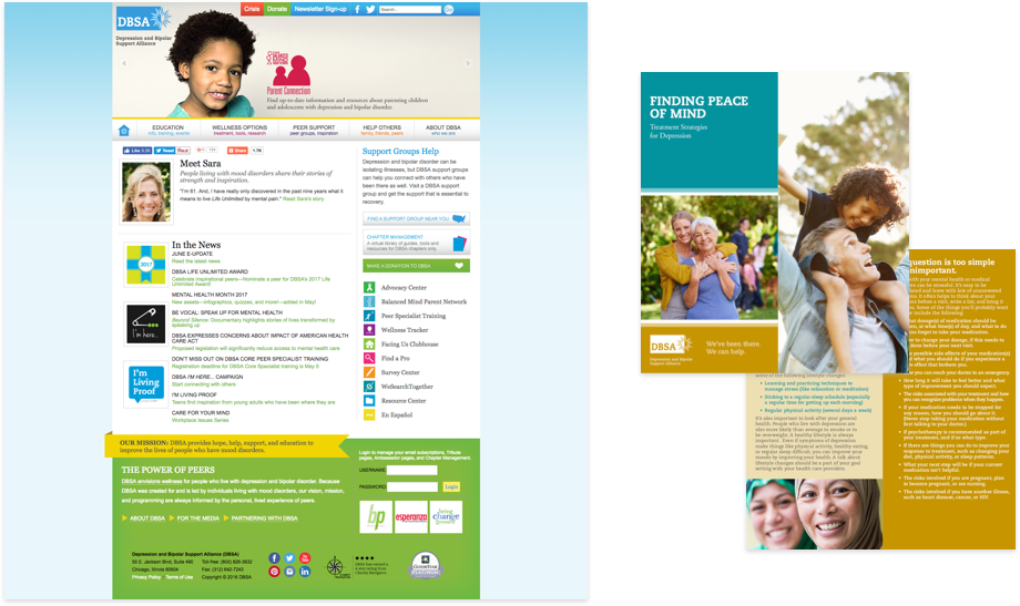 The DBSA site before the redesign
