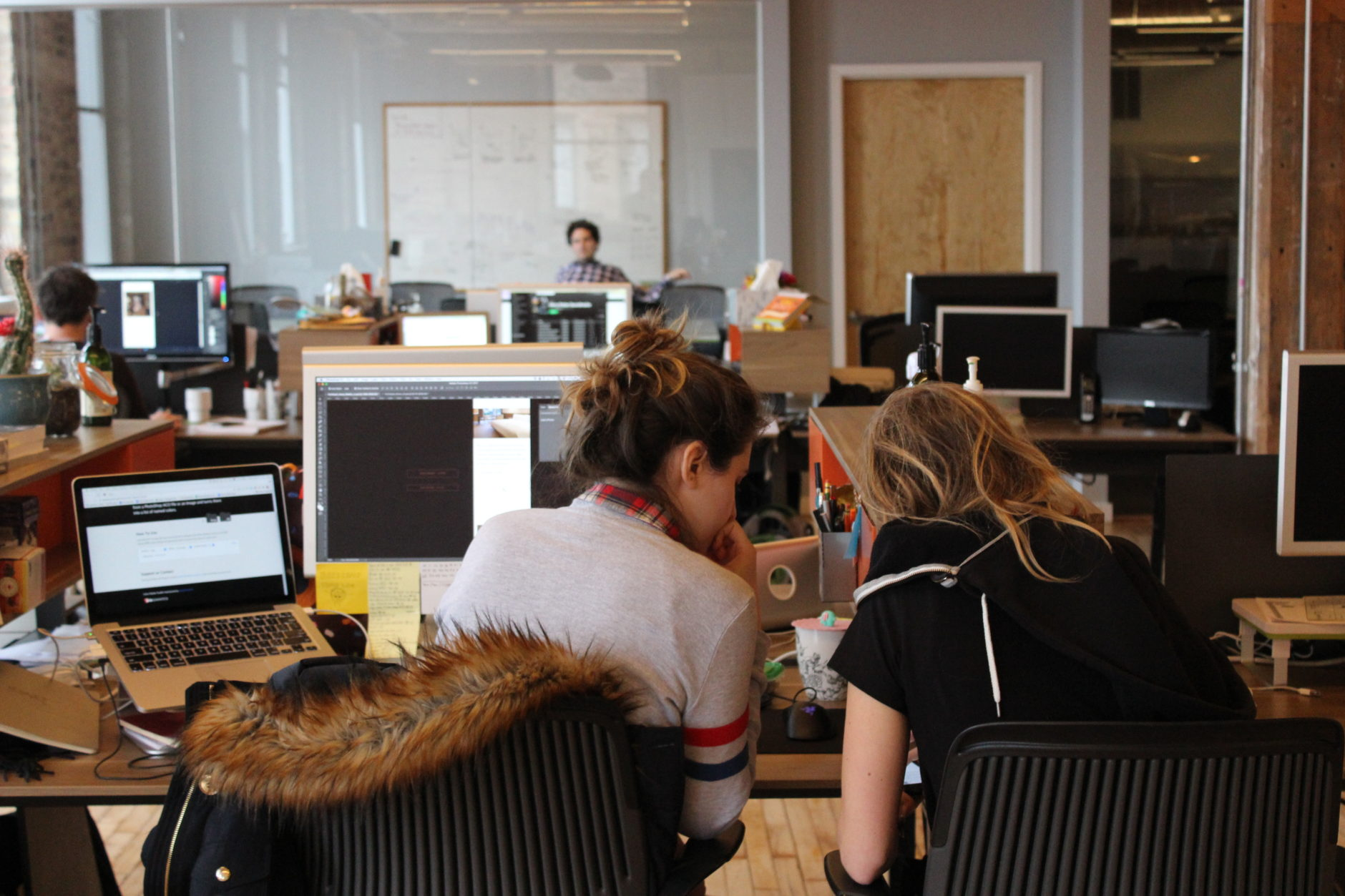 Image showing the backs of two designers sitting at their desks working together.